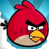 ���� ������ Angry Birds ���� ��� �����